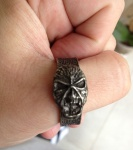 O anel de metal que vem com a árvore genealógica - e pode ser usado como anel mesmo...
