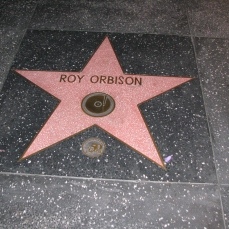 HollyWood_WalkOfFame_0062
