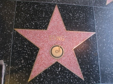 HollyWood_WalkOfFame_8288