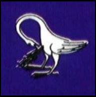 the evil - o pelicano